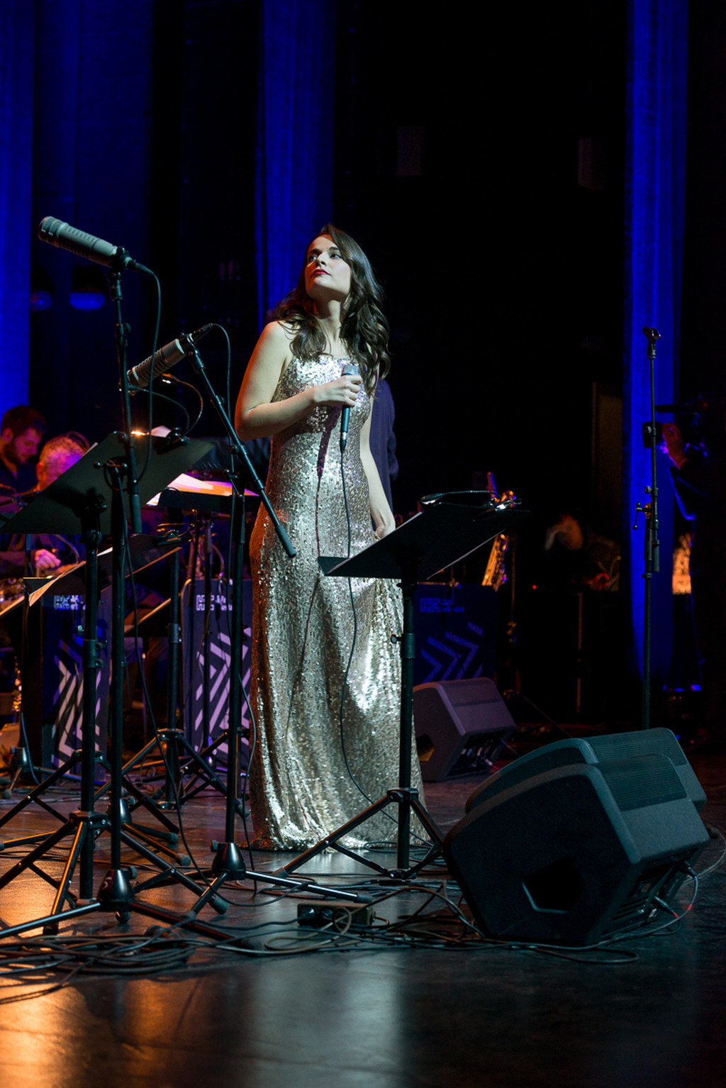 Live in concert with HRT Jazz Orchestra 2015